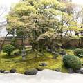 四海唱導の庭