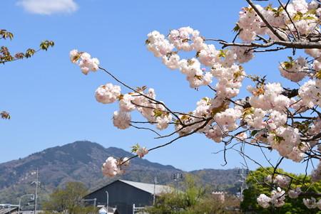 松月と比叡山