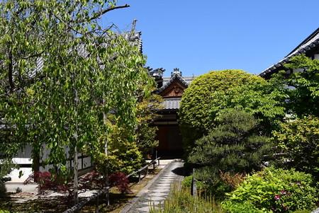 緑の天寧寺