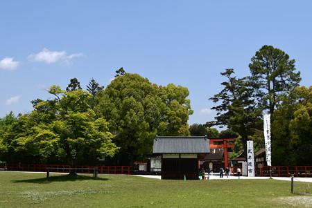 神馬社を包む新緑