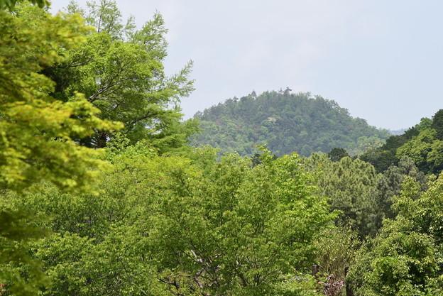 神山(こうやま)