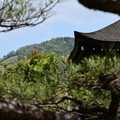 Photos: 泰平閣脇の大文字