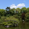 Photos: 緑の栖鳳池