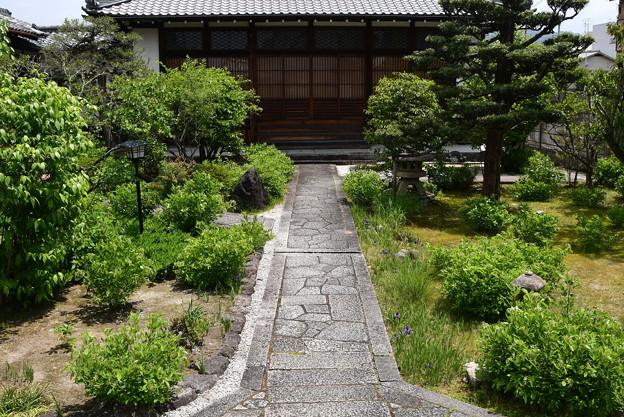 初夏の常林寺