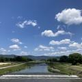 五月晴れの賀茂川