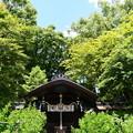 梨木神社本殿