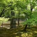 緑の承天閣美術館