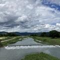 Photos: 昨日の賀茂川