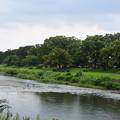 Photos: 水量の収まった賀茂川