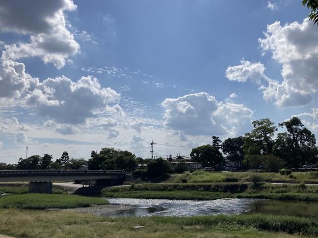 まだ夏雲の賀茂川