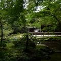 南禅院庭園