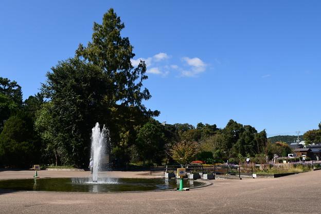 秋空の噴水