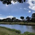 賀茂川の空