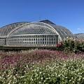 秋空の植物園