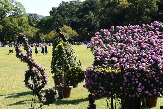 賑わう植物園