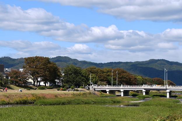 色付き始めた賀茂川