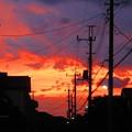 Photos: IMG_0656 (2)