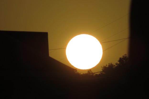 白い夕陽_4973