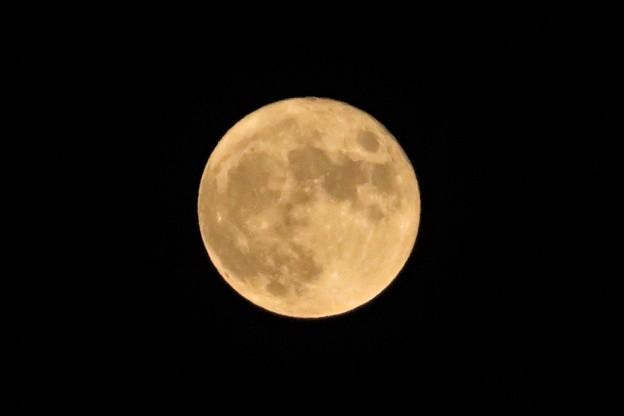 中秋の名月(満月)_9968