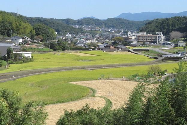 田園風景_0468