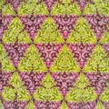 210927_平塚・花菜ガーデン_テレイドスコープ画像<コリウス>_H210927G2982_MZD17F1.8_teleid-2_X10As