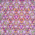 210927_平塚・花菜ガーデン_テレイドスコープ画像<シュウメイギク>_H210927G2958_MZD17F1.8_teleid-2_X10As
