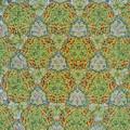 210927_平塚・花菜ガーデン_テレイドスコープ画像<バラの実>_H210927G2960_MZD17F1.8_teleid-2_X10As
