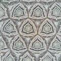 210927_平塚・花菜ガーデン_テレイドスコープ画像<ユリノキの樹皮>_H210927G2963_MZD17F1.8_teleid-2_X10As