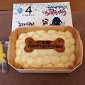 Photos: 7/30 小太郎の誕生日