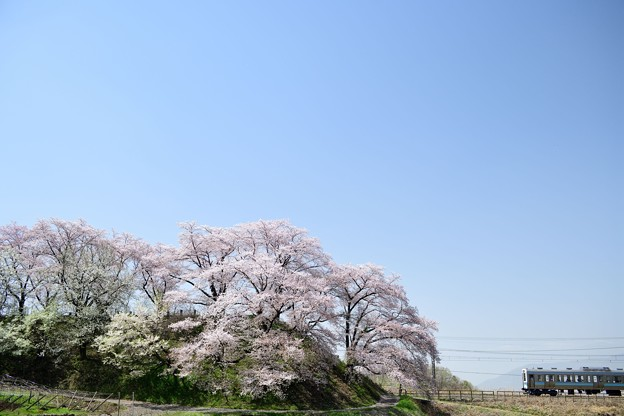 Photos: DSC_5969