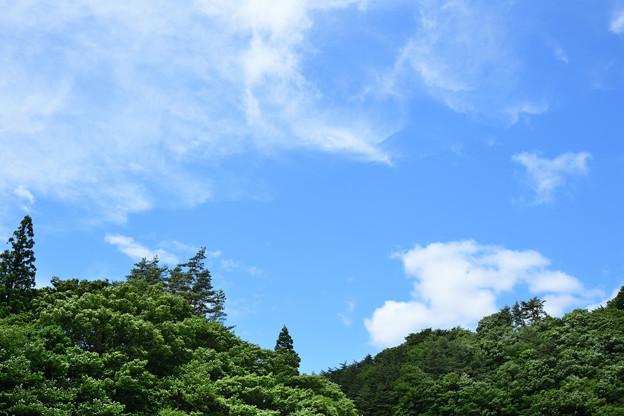 Photos: DSC_9282_00001