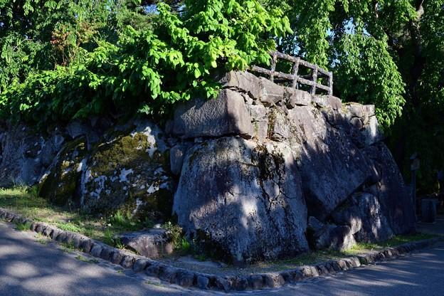 弘前城 亀の石