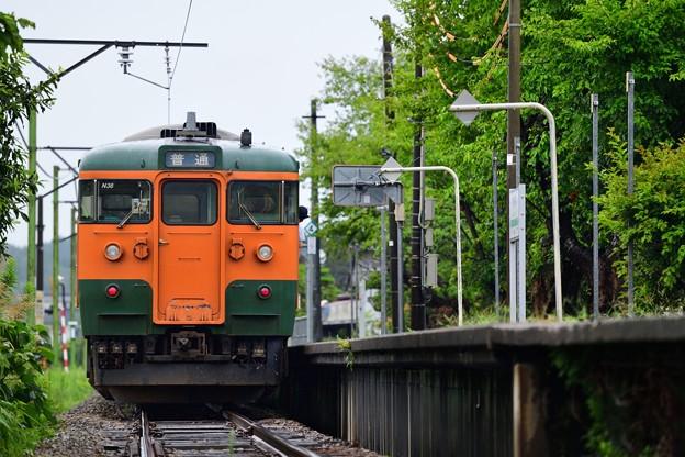 DSC_1798