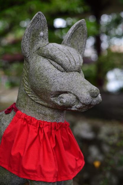 天満宮狛犬