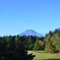 芝生と富士山