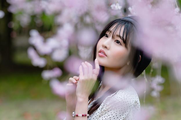 『行く春』