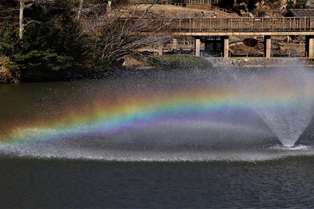 中池の噴水