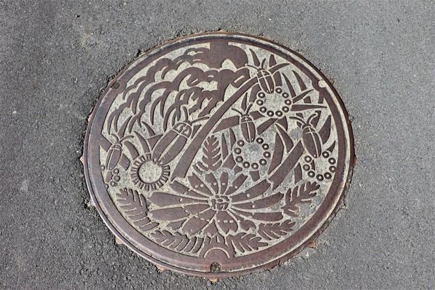 Photos: 長野県上伊那郡辰野町のマンホール