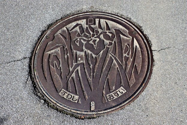 長野県諏訪市マンホール