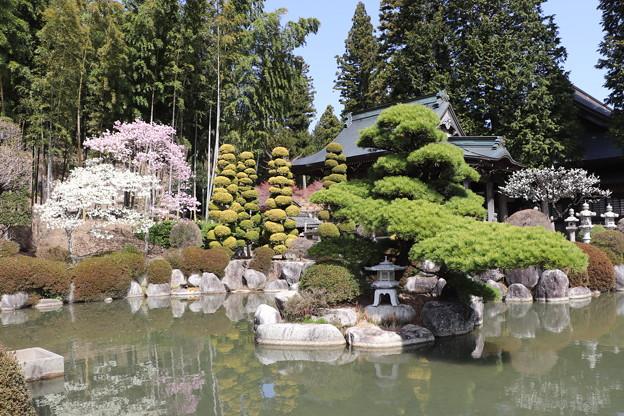 西岸寺庭園池