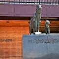 市立大町山岳博物館