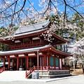 Photos: 蓼科山聖光寺本堂