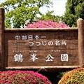 中部日本一ツツジの名所・岡谷鶴峯公園