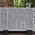 「諏訪の浮城」と呼ばれた高島城