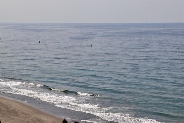 潮騒の丘より大平洋を望む