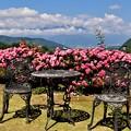 Photos: 愛の庭と中央アルプス
