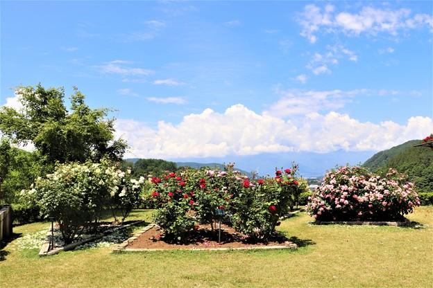 アルプスの庭