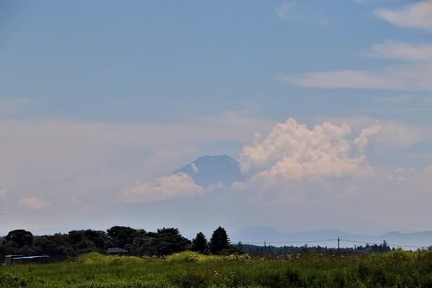 薄らと富士山の山頂