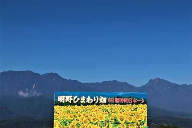 「明野ひまわり畑」パネル