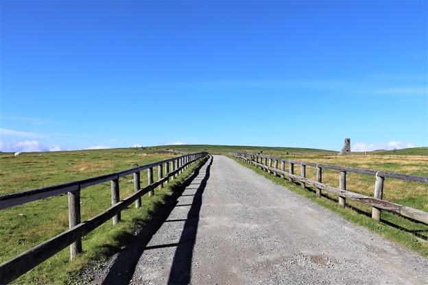 美ヶ原牧場の長い遊歩道